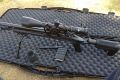 "Howa 1500 .308"" axion stock"